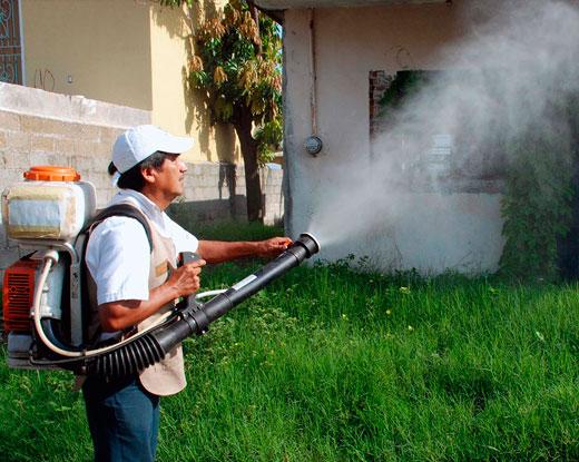 fumigacion-plagas